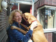 Vrienden van Dierennood | Apeldoorn.media
