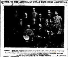 1908 Council of the Australian Sugar Producers Association including L E Challands (Herbert and Mt Bauple) Brisbane, Sugar, History, Historia