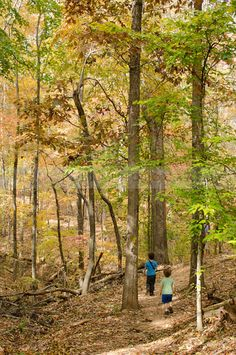 Hard Labor Creek State Park has some great hiking and family fun!