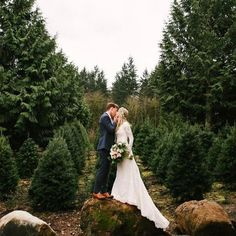 Christmas tree farm for your ceremony and reception