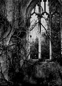 Medieval Ruins