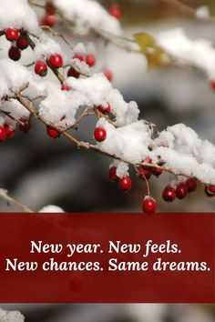 Happy new year captions for Instagram 2021: New year, new feels, new chances, same dreams. #newyearcaptionsforinstagram2021 #newyearquotes2021 #newyearwishes2021