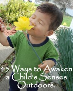 Connecting Family and Seoul: 45 Ways to Awaken a Childs Senses Outdoors