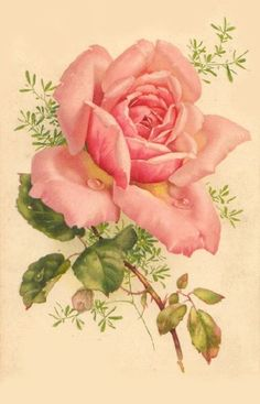 Fabric Block French Victorian Single Pink Rose on Fabric Vintage Floral Vintage, Vintage Diy, Vintage Cards, Vintage Flowers, Vintage Postcards, Vintage Prints, Pink Flowers, Botanical Illustration, Botanical Prints