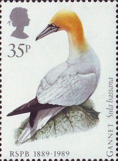 Birds 35p Stamp (1989) Northern Gannet