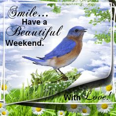Smile Have a Beautiful Weekend cute animated friend weekend friday sunday saturday greeting weekend greeting