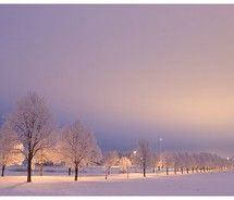 Winter avenue after sunset