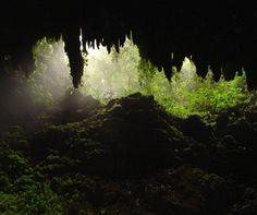 Camuy Caves  Camuy, Puerto Rico