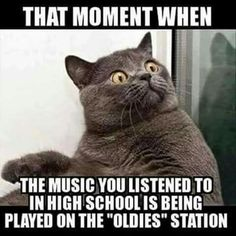 Yes. Thanks, California for at least having an oldies station that plays all of my songs from high school.