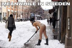 """Googled """"meanwhile in Sweden"""". Was not disappointed"""
