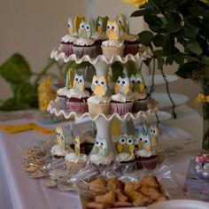 Beautiful owl cup cakes at Kristel & baby Liam's Shower