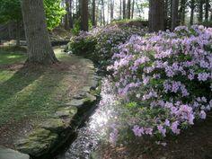 Hodges gardens