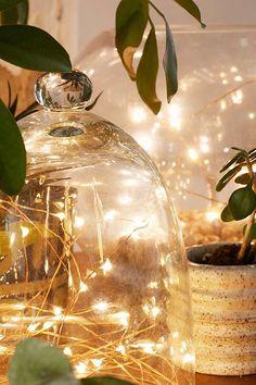 Slide View: 4: Leuchtkäfer-Lichterkette