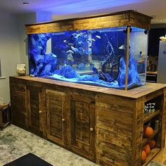 Colorful LED Aquarium Light is suitable for fish tank length and Max.thickness We Offer EU plug and US plug. It has a white-blue, colorful, white-blue & colorful, 3 colors model. Aquarium Stand, Home Aquarium, Aquarium Design, Cichlid Aquarium, Reef Aquarium, Aquarium Fish Tank, Fish Tank Wall, Cichlid Fish, Discus