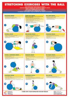 STRETCHING EXERCISES WITH THE BALL Fitness Instructional Wall Chart Poster - available at www.sportsposterwarehouse.com