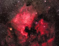 North American Nebula (NGC 7000) - located about 1,500 years away