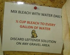 The perfect bleach solution