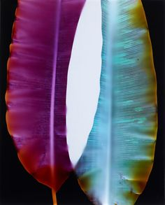 """Double Portrait #3,"" 2014 by Klea McKenna via www.synapticstimuli.com"