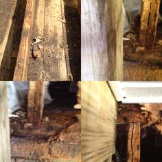 We can fix any damaged wood issues as well.