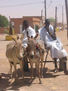 Mauritania - pete holbrook
