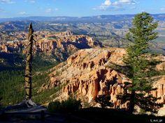 Bryce Canyon National Park, Utah - Bing Images