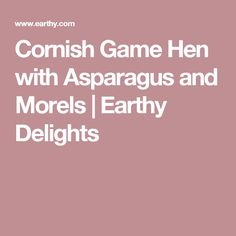 Cornish Game Hen with Asparagus and Morels | Earthy Delights
