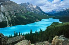 Peyto Lake in Canada - Idyllic scenery