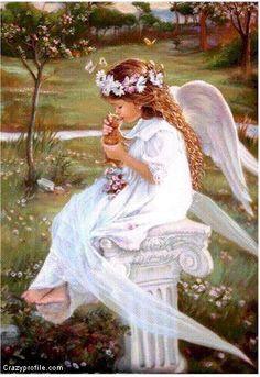 Amai toda a criação divina, os animais são obras de Deus e merecem todo o nosso respeito!...