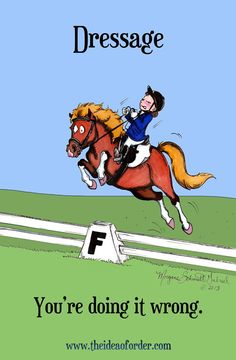 Some horses just prefer jumping!,, this was me but on a western saddle.. then i was told i was doing it wrong. :) when i was younger. then i changed to english and never went back! Dressage Horses Learn about #HorseHealth #HorseColic www.loveyour.horse