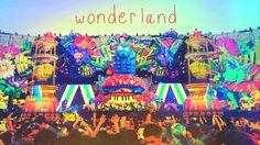 W O N D E R L A N D #edm #insomniacevents #beyondwonderland Edm Festival, Festivals, Insomniac Events, Beyond Wonderland, Rave Ready, Partying Hard, Wild And Free, Dubstep, Wild Hearts