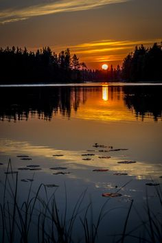 Sunset in Kuusamo by Tomppa R on 500px