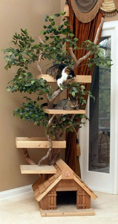 Amazing Outdoor Cat Climbing Trees, cat furniture tree, cat towers ~ Home Design Cat Climbing Tree, Cat Climbing Shelves, Outdoor Cat Enclosure, Cat House Diy, Diy Cat Tree, Cat Towers, Cat Shelves, Outdoor Cats, Indoor Outdoor
