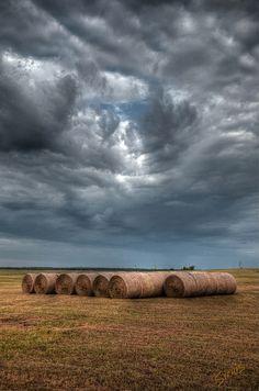 Fall Hay Rolls, Rural Oklahoma