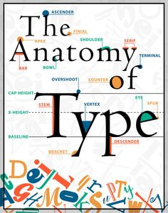 The Anatomy of Type poster by Maureen Stewart at designstew: for personal use only, and please credit accordingly