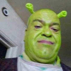 I steal Shrek images Shrek Memes, Memes Estúpidos, Stupid Funny Memes, Funny Relatable Memes, Haha Funny, Cute Memes, Funny Reaction Pictures, Funny Pictures, Current Mood Meme