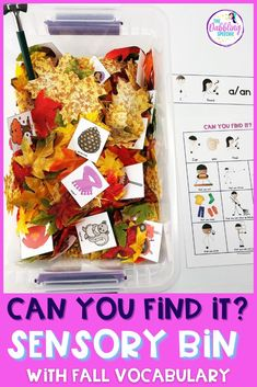 You know those days you're scrambling for an engaging hands-on activity that goes along with your lesson? Rather than scouring your shelves or rushing to find a resource that requires lengthy assembly, check out my noun-function sensory bins! Preschool Speech Therapy, Preschool Science Activities, Speech Language Pathology, Language Activities, Speech And Language, Fall Sensory Bin, Sensory Bins, Language Lessons, Vocabulary