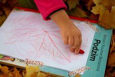 Podzimní překvapení Plastic Cutting Board, Coasters, Coaster