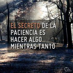 #serpositivo #saludable      #positivo #pensamiento #frasepositiva #frasedelavida