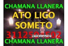 Resultado de imagen de EL CHAMAN http://ramiro66670.wix.com/chamanllanero