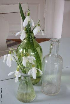 Maak je huis klaar voor de feestdagen – met winter bloemen | Maison Belle