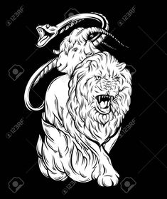 Vector illustration of chimera made in hand drawn style. Heraldry and logo concept art. Template for card poster banner print for t-shirt. Logo Concept, Concept Art, Chimera Mythology, Mythology Tattoos, Art Template, Banner Printing, Dark Fantasy Art, Mythical Creatures, Vector Art