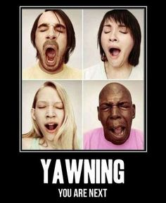 yawn.   This would be funny to put on the wall.