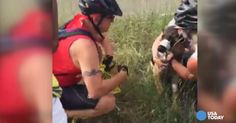 Colorado Man Rescues German Shepherd With Muzzle Taped Shut Now Watch, Local Shelters, Interesting News, Happy Endings, Weird Facts, Rescue Dogs, The Man, Fur Babies, Dog Cat