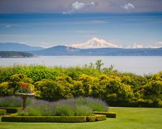 Garden with amazing view. Where is this? Interior Design Ideas: Coastal Homes