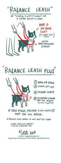 Boogie TTOUCH notes: BALANCE LEASH | by lili.chin