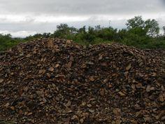 Arreglo de caminos. Ese basalto triturado que ha sido depositado al margen del camino sirve para rellenar los pozos que se generan por el paso del transporte y las lluvias.