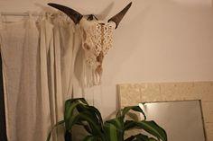 Hanger Shortage | Cydney Morris & Dallas Wand, Stone Cold Fox