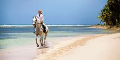 Horse Riding On Belle Mare Beach - Mauritius Attractions