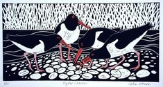Celia Lewis: Oyster catchers