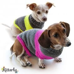 Just what the tiny Astrid will need to combat the cold WI winters - Puppy Pullover (FREE!)